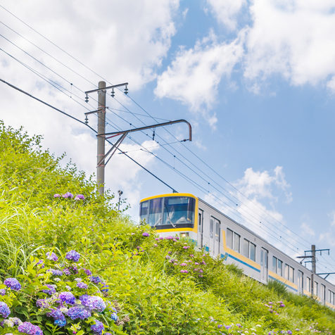 Local line running in the outskirts of Yokohama
